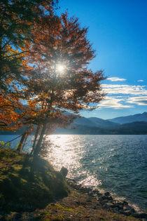 Autumn 0001 von Mario Fichtner
