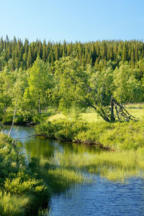 Summer river in northern Sweden von Thomas Matzl