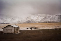 Pamir Highway von Elias Branch