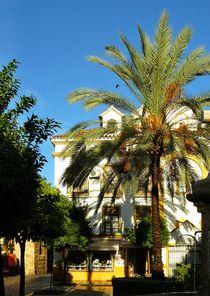 Plaza de la Iglesia in Marbella by gscheffbuch
