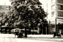 Unter dem Baum by Bastian  Kienitz