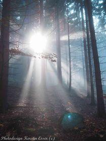 Das mystische Licht! von photodesign-kerstin-esser