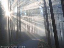 Die Sonne pur... von photodesign-kerstin-esser