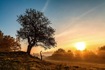 Guten Morgen von Sandro Mischuda
