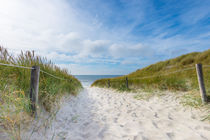 20150810-20150810-17-10-29-hcp-3591-the-path-to-the-sea