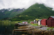 Village in Norway by Janis Upitis