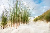 Strandszene by hannes cmarits