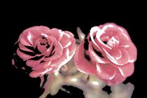A pair of roses in pencil on dark background von Peter-André Sobota