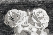 A pair of roses in sketch on dark background von Peter-André Sobota