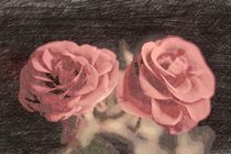 A pair of roses in sketch2 on dark background von Peter-André Sobota