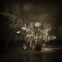 flower and light - I by Glory Denisov
