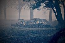 Bagger im Nebel von leddermann