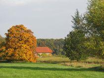 Herbstland von Angelika  Schütgens