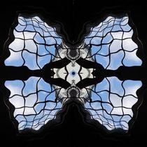 Fensterblüte von Angelika  Schütgens