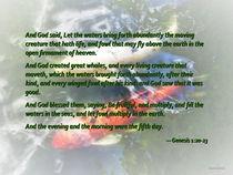 Genesis 1 20-23 And God said, Let the waters bring forth abundantly by Susan Savad