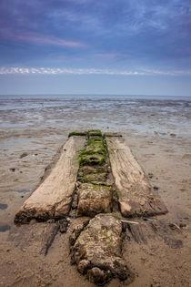 Nordsee Footprint von Denis Wieczorek