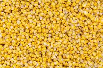 Mais macro als Hintergrund Struktur von wsfflake