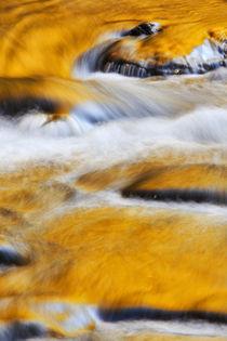 der goldene Fluss by moqui