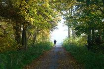 Dem Herbst entfliehen von Bernhard Kaiser