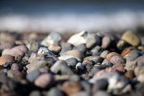 steinig von Daniel Burdach
