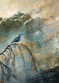HEAVENLY BIRD II von Pia Schneider
