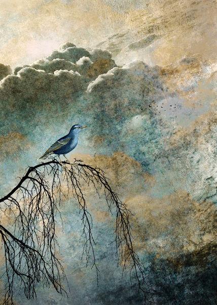 Heavenly-bird-ii-displate