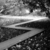 ZigZag pathway by Alexander Kurlovich