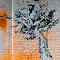 tree on bricks by Ralf Ketterlinus
