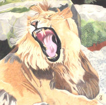 And the King roars by Laurence Collard