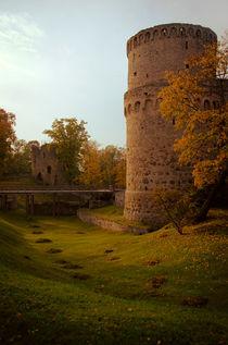 Cesis Medieval Castle von Janis Upitis