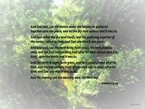Genesis 1 9-13 ... let the dry land appear by Susan Savad