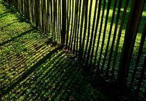 Schattenspiele eines Gartenzauns von ysanne
