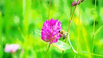 Biene I von Uwe Ruhrmann