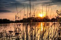 Sunset in the evening by Denis Wieczorek