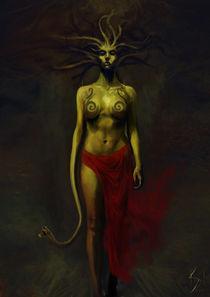 Medusa by Shahan Zaidi