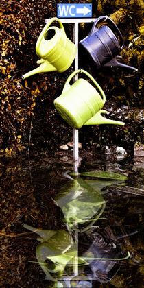 Zum WC -call of nature von Chris Berger