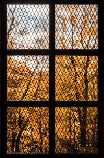 Window to Freedom von Janis Upitis