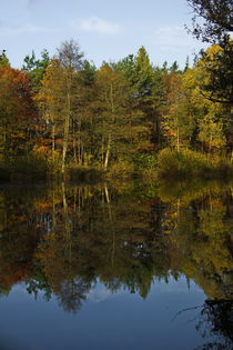 reflection, autumn colors von Wladimir Zarew