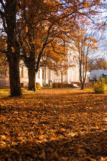 Autumn Leaf Carpet von Janis Upitis