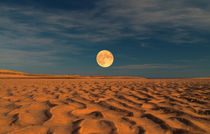 Moon across the Sands by Dave Harnetty
