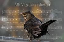 Alle Vögel sind schon da.... by Chris Berger