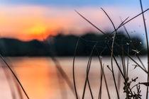 Sonnenuntergang am Tuttenbrock von Denis Wieczorek