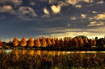 Herbst von Helge Lehmann