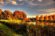 Herbstlandschaft von Helge Lehmann