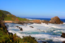 Tsitsikamma National Park - Garden Route in South Africa by mellieha