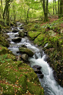 River Lyd on Dartmoor by Pete Hemington