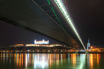 Stadtansicht Bratislava vom Donauufer aus gesehen von Christian Hallweger