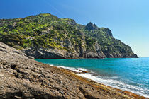 Punta Chiappa, Liguria, Italy by Antonio Scarpi