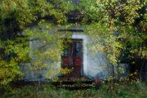 A forgotten house by Tony Töreklint