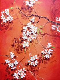 Weisse Blüten von Heike Jäschke